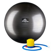 Professional-Stability-Ball-Black